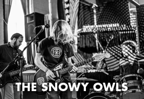 The Snowy Owls